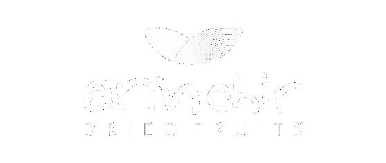 ARMCHIR